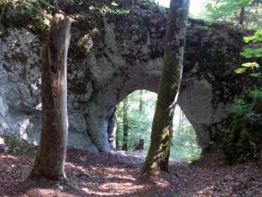 Blick auf ein Felsentor. Hinter der nach oben abgerundeten Öffnung in einer massiven grauen Gesteinswand zeigt sich Wald. Im Vordergrund stehen zwei Bäume.