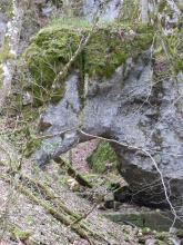 Das Bild zeigt eine hohe graue Felswand mit einem eckigen Durchlass unten links. Die Wand stützt sich an einen von links nach rechts unten abfallenden Steilhang mit dünnen Bäumen. Die Kuppe des Felsens ist stark bemoost.