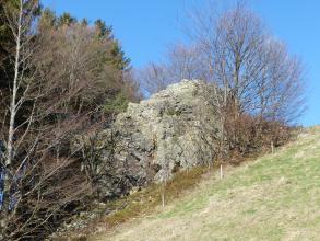 Links von einem Wiesenhang erhebt sich eine grünlich graue, zerklüftete Felsformation, die teilweise von kahlen Bäumen verdeckt wird. Links hinter dem Felsen stehen weitere Bäume.