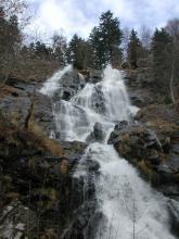 Von einer bewaldeten Felskante im oberen Bildteil stürzt sich ein Wasserfall mit schäumender Gischt über mehrere dunkelgraue, sowohl breite als auch enge Felsstufen bis zum unteren Bildrand.