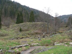 Im Bildmittelpunkt steht hier ein bräunlich grüner, länglicher Erdwall mit vereinzeltem Baumbestand. Im Vordergrund fließen zwei schmale, voneinander getrennte Bäche von rechts nach links. Im Hintergrund steigen bewaldete Hänge auf.
