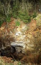 Blick in eine schluchtartige Vertiefung. Im Böschungsrand gegenüber st im unteren Teil offenliegendes Gestein zu sehen. Der obere Teil ist mit Bäumen und Sträuchern bewachsen.