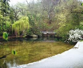 Das Bild zeigt eine grünliche, von Uferwegen und Bäumen eingefasste ruhige Wasserfläche. Im Hintergrund ist eine kleine Brücke sowie ein bewaldeter Hang erkennbar.