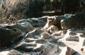 Das Bild zeigt eine von Wasser umspülte Felslandschaft vor einem Waldhintergrund. Die Felsen sind glatt und grau und haben Buckel, Rinnen sowie Nischen.