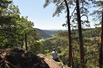 Zwischen hohen Bäumen hindurch und über abgerundete Felsgrate hinweg schaut man in ein weit entferntes Tal, das auf beiden Seiten von bewaldeten Bergen begrenzt wird. Ein Wanderer nutzt einen der Felsen als Aussichtspunkt.