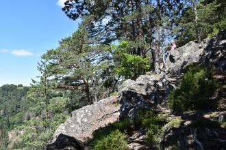 Seitlicher Blick auf mehrere große, an einem nach rechts aufsteigenden Berghang verteilte Felsblöcke. Vor und hinter den Felsen stehen hohe Bäume. Links hinten ist ein weiterer bewaldeter Berghang erkennbar.
