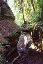 Blick in eine enge, von steilen Felsböschungen gebildete Klamm. Unten, zwischen den sich fast berührenden Felswänden, verläuft ein hölzerner Fußweg. Die Felskuppen sind bewaldet.