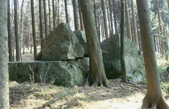 Das Bild zeigt mehrere große, grünlich graue Felsblöcke, die auf- oder nebeneinander liegen. Im linken Bildteil liegt ein pyramidenförmiger Block auf einem flachen, breiten Fels. Rund um die Blöcke herum stehen schlanke, hohe Baumstämme.