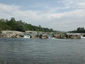 Blick auf einen breiten Fluss mit Staustufe und Felsbarrieren im Mittelgrund. Die Ufer im Hintergrund sind bewaldet.