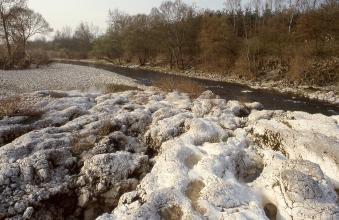 Im Vordergrund dieses Bildes sind weißlich graue, knollige Gesteinsbildungen zu sehen. In Nischen und Vertiefungen steht Wasser. Im Hintergrund ist ein Fluss mit seinen Ufern zu sehen. Links liegt eine Kiesbank, rechts ist das Ufer von Bäumen gesäumt.