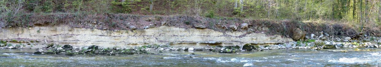Panoramabild einer an einem Fluß entlangführenden, flachen Uferböschung mit teilweise offenliegendem, gelblich grauem Gestein. Über dem Gestein liegt eine stark bewachsene Bodendecke. Dahinter schließt sich ein Waldhang an.