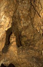 Vor einer in braunen Farben schimmernden Höhlenwand hat sich links ein aufgerichteter Tropfstein abgesetzt. Der Stalagmit erinnert in seiner Form an eine ausgestreckte Hand.