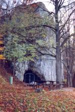 Fast vom Laub eines großen Baumes verdeckt, ragt eine hohe graue Felswand auf. Am Fuß der Wand, vor einem Rastplatz, öffnet sich eine vergitterte Höhle.