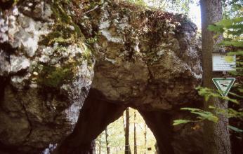 Blick auf eine Felsenbrücke mit gerade noch sichtbarem Durchgang am unteren Bildrand. Rechts steht ein Baum, an dem zwei Hinweisschilder befestigt sind.