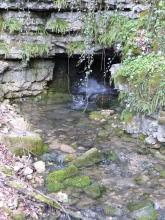 Unter einer grauen, mit Farnen, Moos und Ranken bewachsenen Felswand öffnet sich eine kleine, viereckige Höhle. Aus ihr entspringt ein klarer Bach.