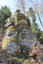 Aufwärts gerichteter Blick auf einen aus mehreren Einzelfelsen bestehenden Felsenturm. Die Felsen sind oben abgerundet und teilweise bemoost. Im Hintergrund stehen hohe Bäume.