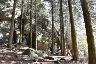 Zu sehen sind hier zahlreiche größere Felsblöcke, die - von rechts nach links immer höher ansteigend - aufgeschichtet sind. Die Felsformation steht in einem Wald mit hohen Bäumen.
