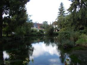 Auf dem Bild ist eine spiegelnde, von hohen Nadelbäumen und Gebüsch eingefasste Wasserfläche zu sehen. Im Hintergrund stehen, zum Teil verdeckt, ein paar Häuser.