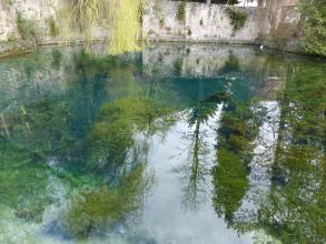 In einer fast bildfüllenden Wasserfläche spiegeln sich Steinmauern und verschiedene Bäume.