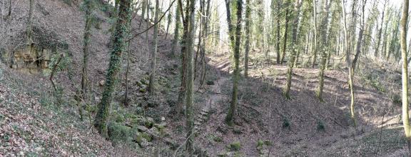 Breitwandfoto, das links einen steilen Waldhang mit offenen Gesteinsbänken eines früheren Steinbruches und rechts eine mit Bäumen bestandene Abraumhalde zeigt. Zwischen beidem führt ein Weg entlang.