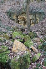 Das Foto zeigt im Vordergrund teils bemooste Blocksteine und im Hintergrund einen steilen Waldhang mit freigelegtem, einem lächelnden Mund ähnlichem Gestein.