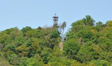 Das Bild zeigt einen bewaldeten Höhenzug. Zwischen den Bäumen ist die Spitze eines metallenen Aussichtsturmes zu erkennen.