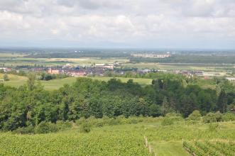 Blick von erhöhter Warte auf Rebterrassen und Wald. Dahinter erstreckt sich eine flache Ebene mit einer Ortschaft sowie Wiesen und Feldern. Rechts hinten ist ein großer Vergnügungspark zu sehen. Im dunstigen Hintergrund steigen Berge auf.