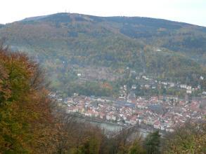 Von weit oben blickt man über Baumwipfel auf die tief unten liegende Altstadt von Heidelberg mit dem Neckar sowie dem Schloss auf der dahinter liegenden Anhöhe. Noch weiter zurück erheben sich hohe, bewaldete Berge.