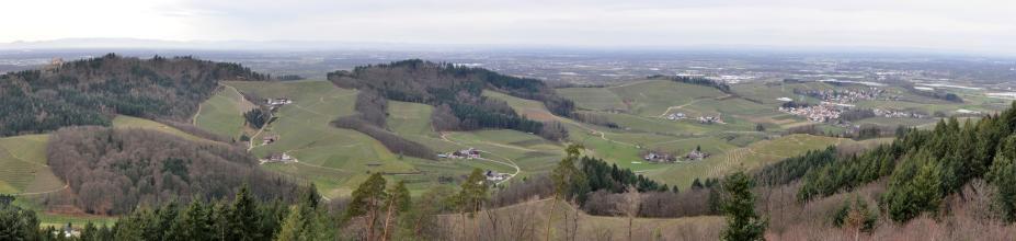 Panoramablick aus großer Höhe über Wälder und Rebhänge. Zwischen den terrassierten Rebanlagen liegen einzelne Gehöfte. Links außen, auf einem Bergsporn, liegt eine Burg. In der dunstigen Ferne rechts erstreckt sich eine weite, zersiedelte Ebene.