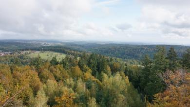 Aus großer Höhe blickt man über teils rötlich gefärbte Baumwipfel über ausgedehnte, hochliegende Wälder und Bergrücken. Links ist ein freiliegender Hügel mit Siedlungshäusern zu erkennen.