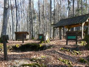 Um einen abgesägten Baumstumpf in der Bildmitte gruppieren sich ein hölzerner Unterstand, mehrere Schautafeln sowie ein weiterer, höherer Wetterschutz für einen alten hölzernen Wagen. Im Hintergrund stehen die Stämme hoher Bäume.