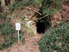 Das Bild zeigt das Einstiegsloch zu einem Stollen an einem Waldhang. Links steht eine Informationstafel.