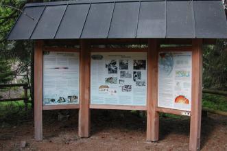 Das Bild zeigt drei durch hölzerne Streben verbundene Schautafeln. Die mittlere Tafel erzählt von der Industriegeschichte im Hotzenwald, die beiden anderen von Gesteinen und Erdgeschichte. Alle Tafeln sind überdacht.