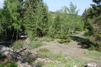 Blick auf eine freie Fläche mit mehreren kleinen grauen Hügeln. Dahinter Nadelbäume sowie ein ausgeschilderter Weg.
