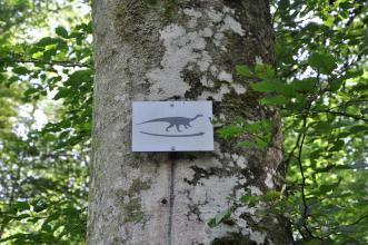 Großaufnahme eines an einem Baum mit fleckiger Rinde befestigten Wegweisers. Das Schild zeigt einen nach rechts führenden Pfeil sowie einen Dinosaurier.