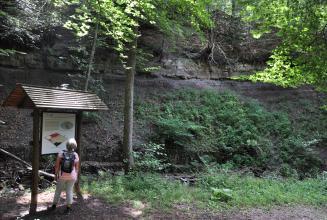Das Foto zeigt links eine überdachte, bebilderte Schautafel mit einer Besucherin sowie rechts und dahinter eine teils überwucherte, an einem Waldhang liegende dunkelgraue Gesteinswand.