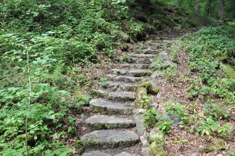 Das Bild zeigt eine alte, im Bogen von rechts oben auf den Betrachter zuführende Steintreppe. Links der ausgetretenen flachen Stufen herrscht dichte Vegetation, rechts ist der Pflanzenwuchs dünner..