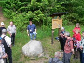 Auf einer Wiese, links von einer Schautafel, liegt ein heller runder Felsblock. Ein Mann in blauem Hemd sagt gerade etwas über diesen Steinblock, und eine Besuchergruppe hört und sieht ihm dabei zu.