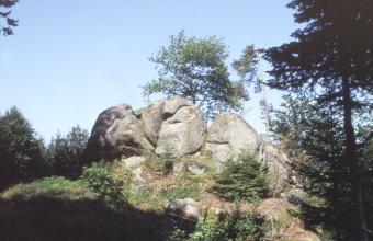 Blick auf mehrere, auf einer Bergkuppe liegenden rundlichen Felsblöcke. Die grauen Blöcke sind von Bäumen und Sträuchern umgeben.