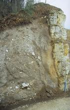 Blick auf eine weißliche, verwitterte Felswand, an die sich links graues, von kleineren Felsbrocken gesprenkeltes Material anschließt. Die Kuppe bildet eine braune, durchwurzelte Erdschicht sowie angrenzender Baumbestand. Unten rechts steht ein Pfosten.