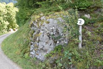 Blick auf einen nach rechts aufsteigenden steilen Waldhang mit hervortretendem, teils mit Moos bewachsenem Felsenkopf. Rechts ist ein Schild mit einer Zahl angebracht. Links verläuft im Bogen ein Fußweg am Hang vorbei.