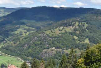 Blick von erhöhtem Standort auf einen nach rechts aufsteigenden bewaldeten Berg. Die teils bewaldete, teils baumfreie Kuppe des Berges knickt nach links hin ab und verläuft dort eben. Der vorgelagerte untere Teil des Berges ist mit Felsen durchsetzt.