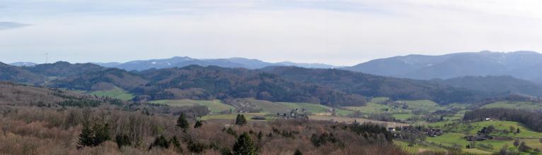 Panoramabild einer teils hügeligen, teils bergigen Landschaft mit Wiesen, Rebhängen, einzelnen Höfen und Wäldern. Auf den Bergen im Hintergrund liegt noch Schnee. Rechts am Bildrand, auf einem abgeflachten Hügel, steht eine Burgruine.