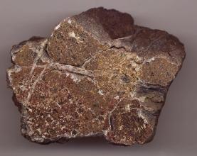 Nahaufnahme eines fast sternförmigen Gesteinsbrockens. Das Gestein ist rötlich braun mit schwarzen Sprenkeln und längs- sowie schräglaufenden grauen Streifen.