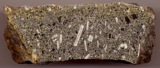 Nahaufnahme eines länglichen Gesteinsbrockens mit geschliffener Oberfläche. Das Gestein ist grau, am oberen und linken Rand grünlich, mit weißen rechteckigen Einlagerungen.