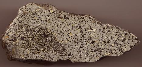 Nahaufnahme eines Gesteinsbrockens in spitzwinkliger, dreieckiger Form, hellgrau mit schwarzen und hellen Sprenkeln. Links unten ist eine größere Blase eingeschlossen, schwarz und weiß gesprenkelt.