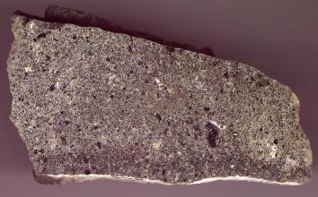 Nahaufnahme eines länglichen, oben abgeschrägten Gesteinsbrockens, violett bis bräunlich grau mit dunkelvioletten und weißen Sprenkeln.