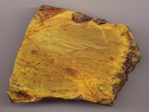 Nahaufnahme eines fast quadratischen Gesteinsbrockens mit glatter Oberfläche und teils gezackten Rändern. Das Gestein ist goldfarben mit rötlich braunen Streifen und Flecken.