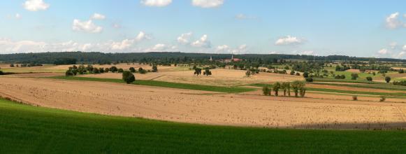 Panoramablick auf leicht hügelige Ackerflächen. Die Äcker sind durchsetzt mit Baumgruppen. Im Hintergrund ein durchgehender Waldstreifen, davor ist eine Siedlung mit Kirchtürmen erkennbar.