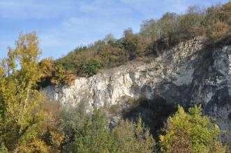 Blick auf nach rechts ansteigendes Felsgestein, weißlich bis dunkelgrau, im Vordergrund von Bäumen verdeckt. Auf der Felskuppe wachsen ebenfalls Bäume.